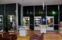 Mannequin, Mushroom, Upright Display Showcases