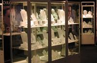 Upght Display Cabinet - Custom