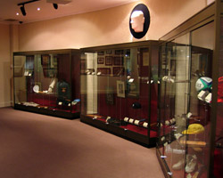 Museum Display Cabinets by Showfront - SCG