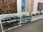 Display cabinets by Showfront at the Mbuntua Gallery, Alice Springs