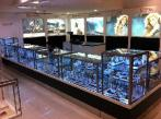 Glass Display Counters by Showfront. Myer, Sydney 2