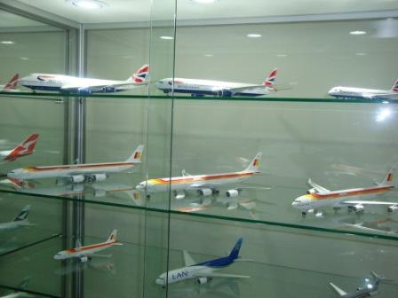 Model Display Case