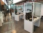 Museum Display Cabinets by Showfront 1